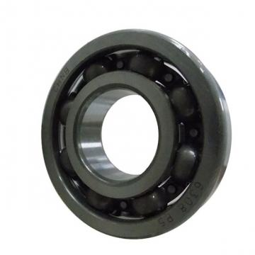 Csk25 Csk25PP Csk25 2RS 6205 Sealed Motor Bearing