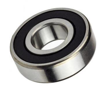 Top Quality Machine Bearing Nzsb-6004 2RS C3 for Precision Meters, Machine Tools, Waterpump