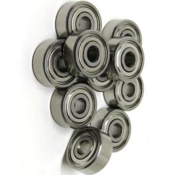 Single-Row 6004 Z/Zz/Open/2rz/2RS Deep Groove Ball Bearing Factory